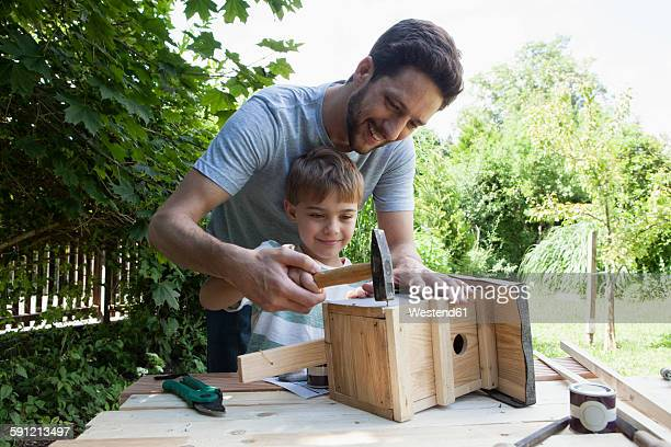 father and son timbering a birdhouse - birdhouse stock pictures, royalty-free photos & images