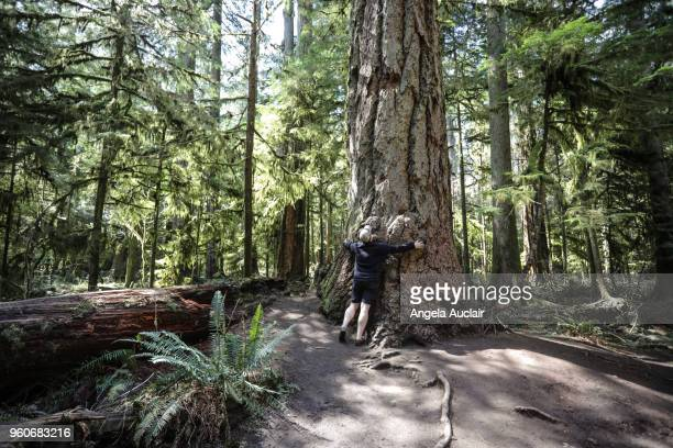 Father and Son Walk through Cathedral Grove