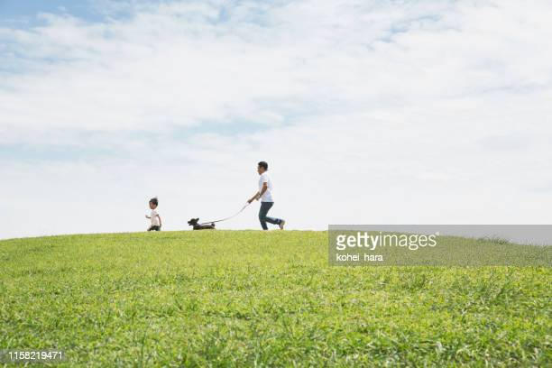 father and son walking dog together in the park - natural parkland stock pictures, royalty-free photos & images