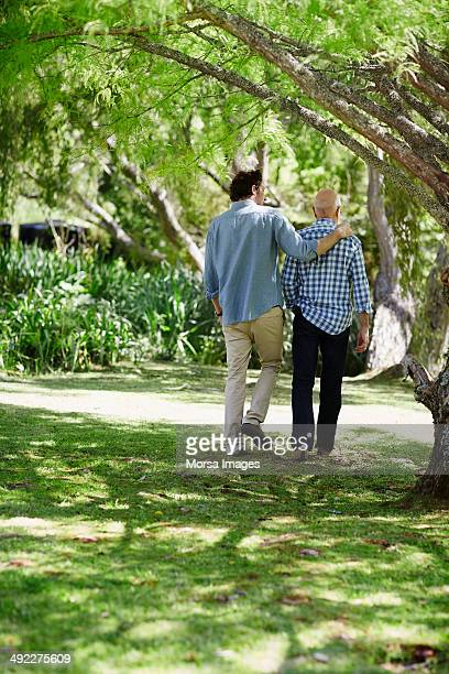 father and son walking in park - arm around stock pictures, royalty-free photos & images