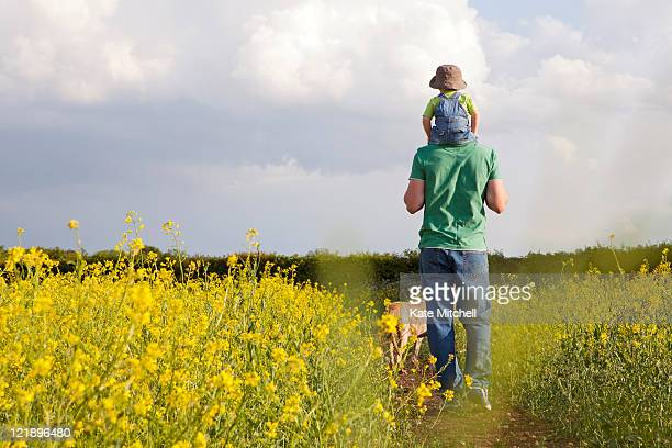 father and son walking through field - one animal stock pictures, royalty-free photos & images
