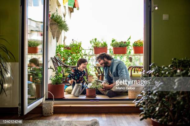 father and son watering plants on their terrace - genderblend stock pictures, royalty-free photos & images