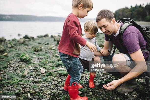 father and sons exploring rocky beach - washington state stock pictures, royalty-free photos & images