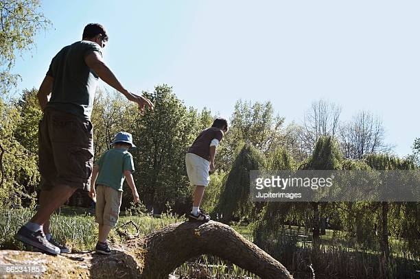 Father and sons walking along a log