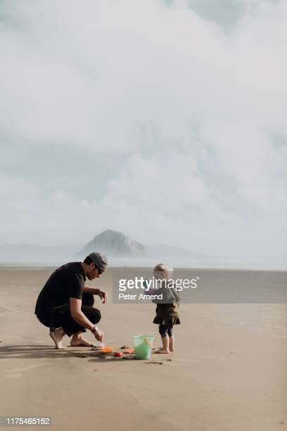 father and toddler playing with sand on beach, morro bay, california, united states - central california stock pictures, royalty-free photos & images