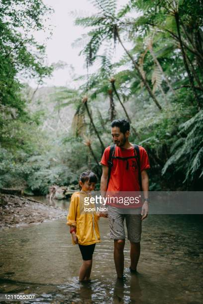 father and young daughter hiking in jungle river, okinawa, japan - reality fernsehen stock pictures, royalty-free photos & images
