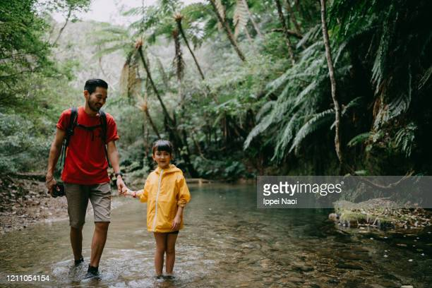 father and young girl hiking through jungle river, okinawa, japan - reality fernsehen stock pictures, royalty-free photos & images
