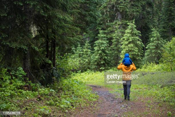 father carries son on his shoulders during a hike through the forest. - schulter stock-fotos und bilder