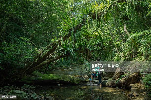 Father carrying baby and hiking in jungle stream