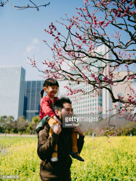 Father carrying daughter on shoulders and having fun with plum blossoms