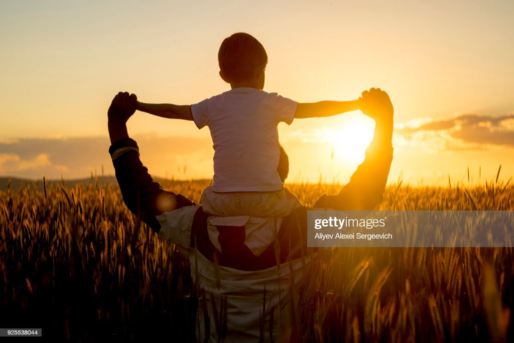 Father carrying son on shoulders in field of wheat at sunset : Photo