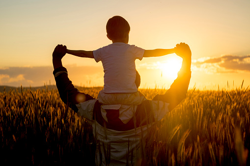 Father carrying son on shoulders in field of wheat at sunset - gettyimageskorea