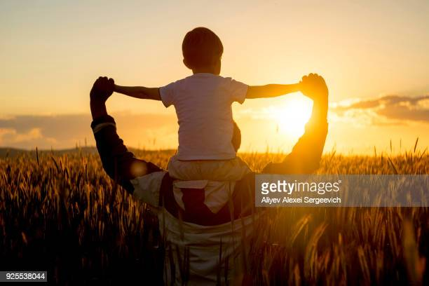 father carrying son on shoulders in field of wheat at sunset - escena rural fotografías e imágenes de stock