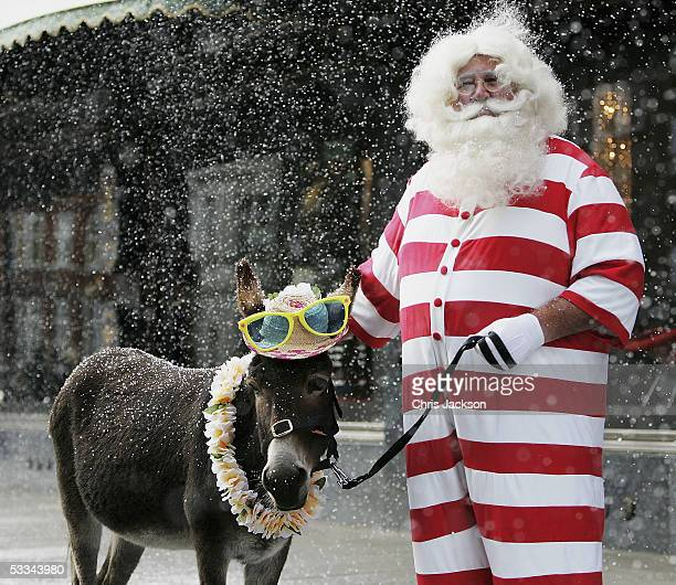 Father Christmas and his seaside donkey Dino pose for photographs outside a snowcovered Harrods before taking guests on tour of Christmas World on...