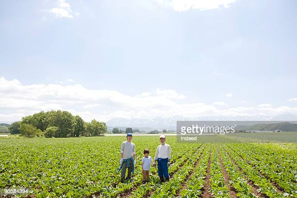 father, grandather, and boy in vegetable field - hokkaido stock pictures, royalty-free photos & images
