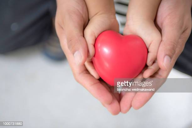father hands and hands holding red hearts together. - organ donation stock photos and pictures