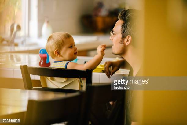 father helping young son at meal time - heshphoto stockfoto's en -beelden