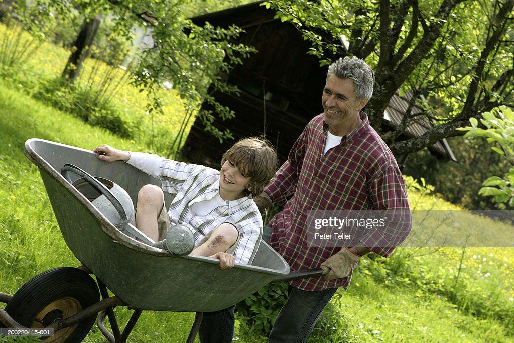 Father In Garden Pushing Son In Wheelbarrow Smiling Stock