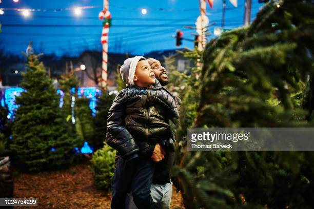 father lifting up son while shopping for christmas trees - holiday stock pictures, royalty-free photos & images