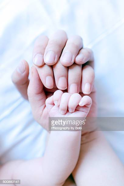 Father mother and baby hands together