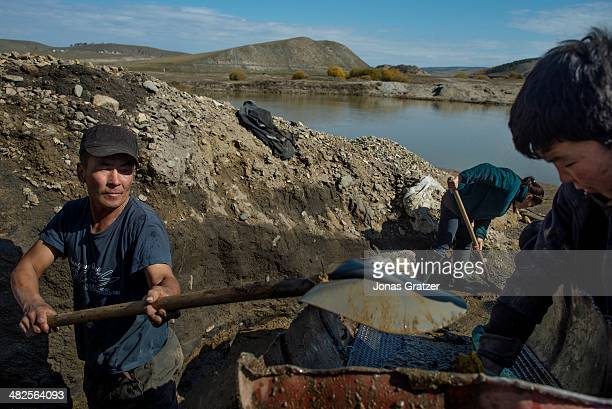 Father, mother and son work together to pan for gold in the Sharygol district in Mongolia. Mongolia today is known for its large deposits of copper,...