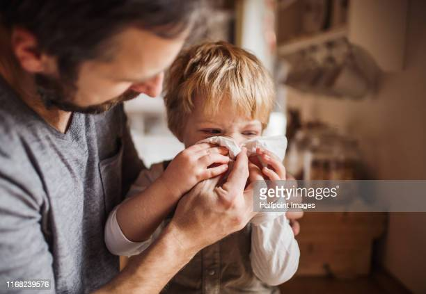 a father on paternity leave looking after small son indoors, blowing his nose. - resfriado y gripe fotografías e imágenes de stock