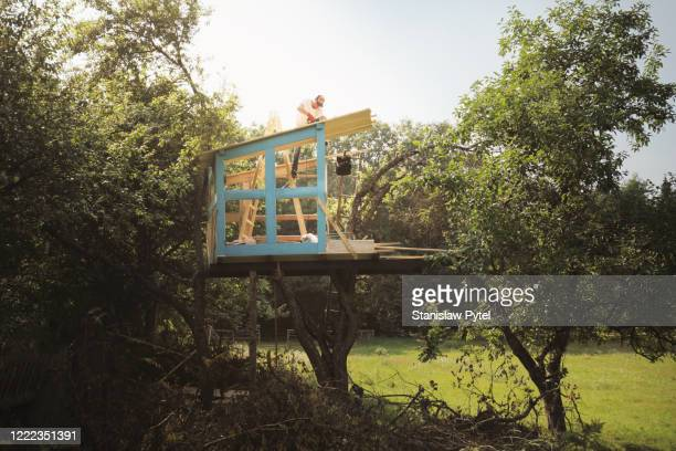 father on tree building tree house for kids - tree house stock pictures, royalty-free photos & images