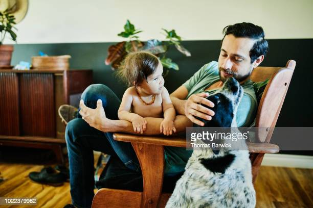 father petting dog while sitting in chair with infant daughter in living room - vida de bebé fotografías e imágenes de stock