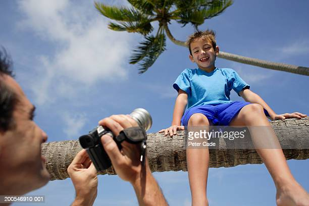Father photographing son sitting on tree, low angel view