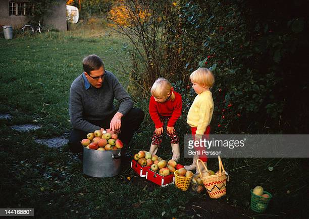 Father picking apples with his dauthers