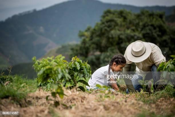 vader planten van een boom met zijn dochter op de boerderij - colombia land stockfoto's en -beelden