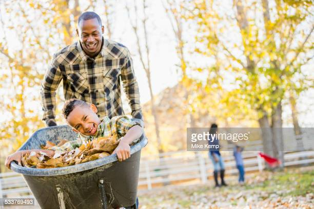 father pushing son in wheelbarrow in autumn leaves - wheelbarrow stock pictures, royalty-free photos & images