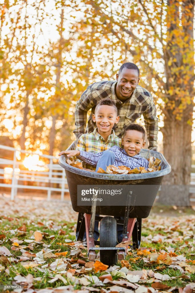 Father pushing sons in wheelbarrow in autumn leaves : Foto stock