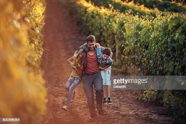Father taking his children through a vineyard