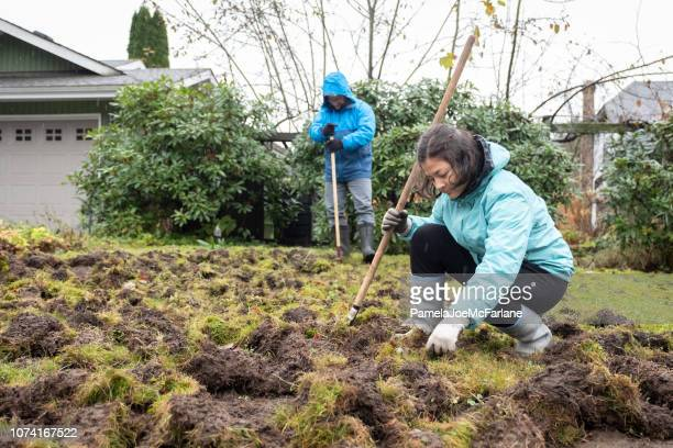 Father, Teenaged Daughter Repairing Lawn Damaged by European Chafer Beetle
