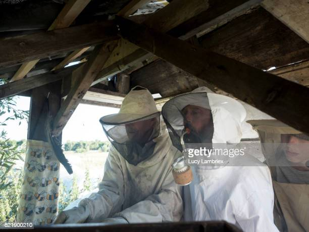 Father & Teens: beekeeping