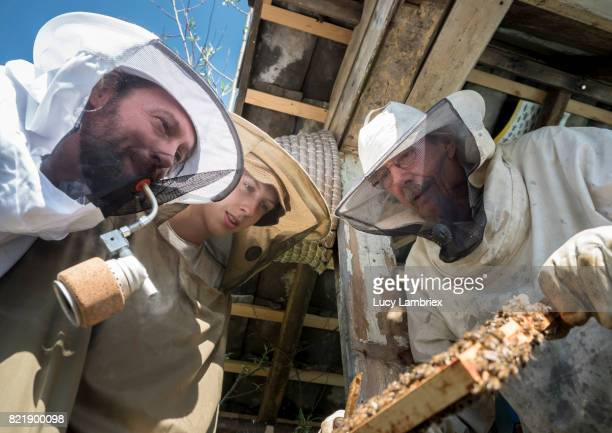 Father & Teens: three generations of beekeepers
