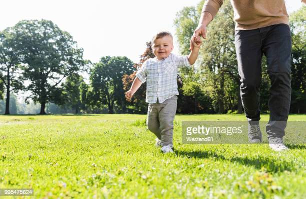 Father walking hand in hand with son in a park