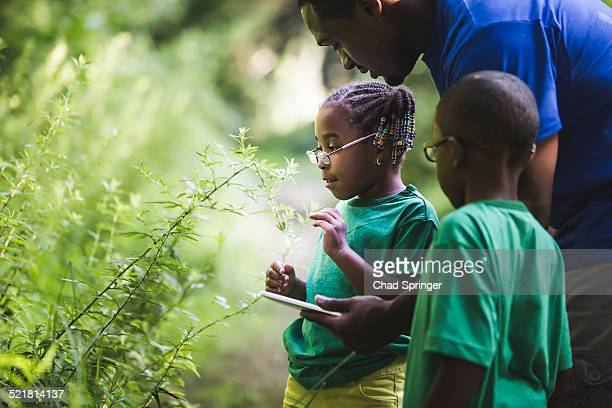 Father with daughter and son looking at plants in forest eco camp