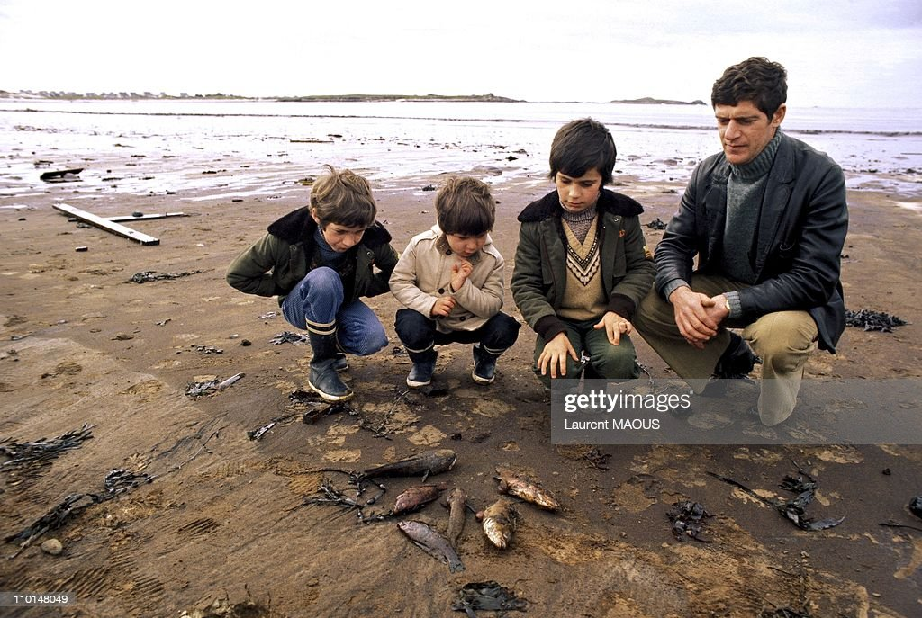 A father with his children looking at oil-soaked and dead fishes due to the sinking of the Amoco Cadiz in Portsall, France in March, 1978.