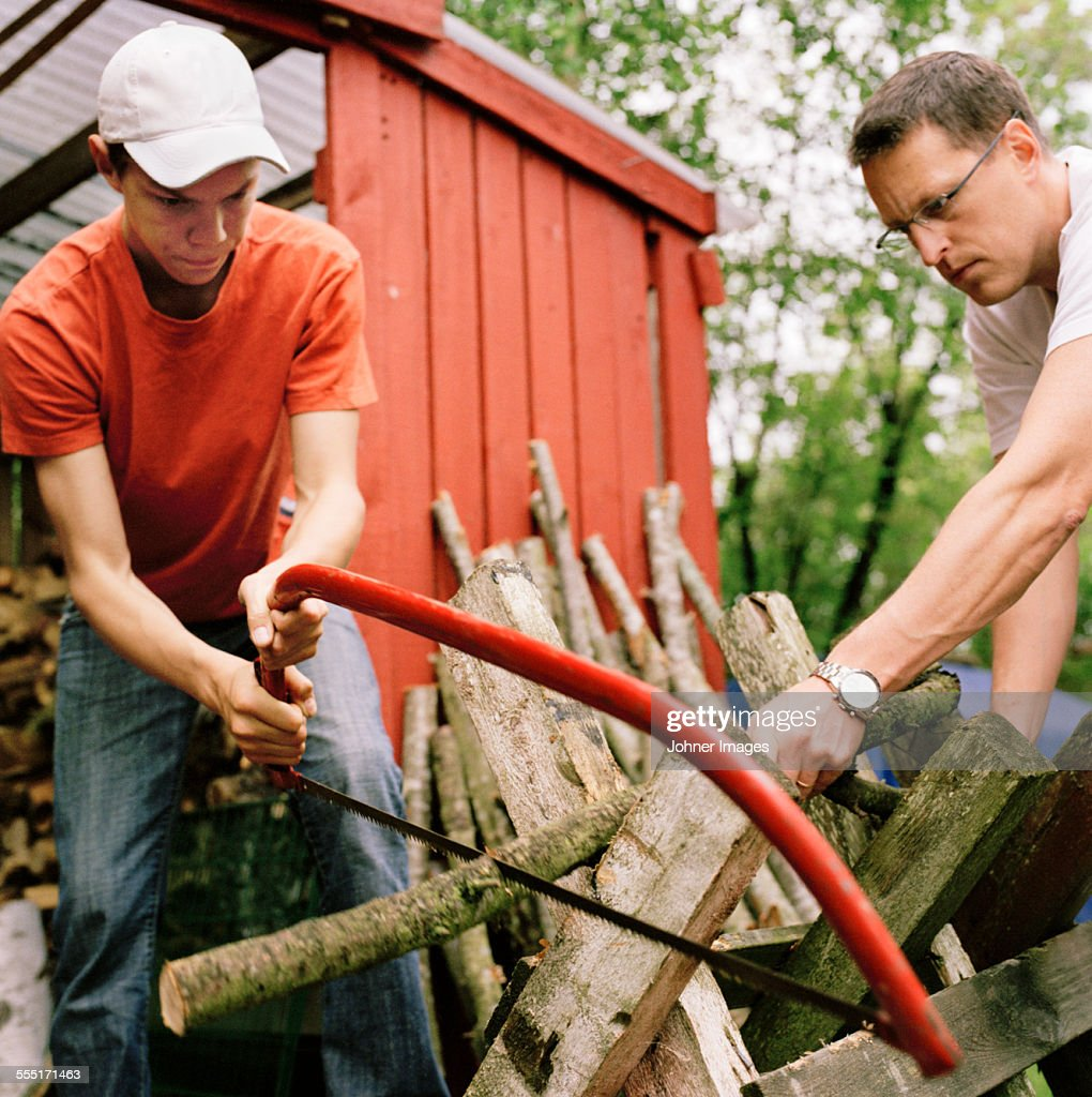 Father with teenage son sawing branch : Stock Photo