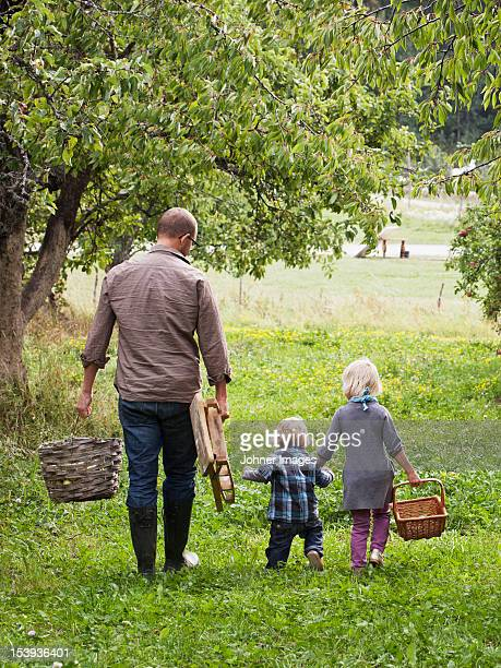 Father with two kids going to picking apples