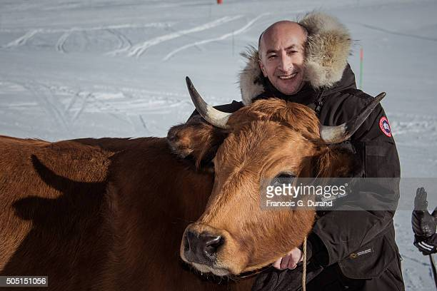 Fatsah Bouyahmed poses with a cow during the photocall for 'La Vache' during the 18th L'Alpe D'Huez International Comedy Film Festival on January 15...