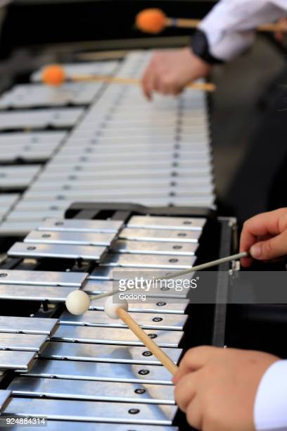 Faucigny music festival Brass band musicians Xylophone SaintGervais France