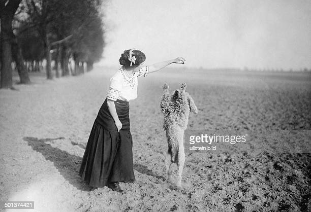 Performing poodle undated probably around 1910 Photographer Haeckel