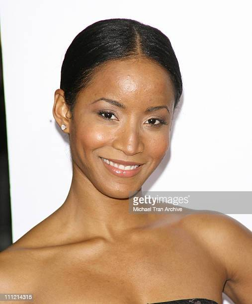Faune Chambers during The Pursuit of Happyness World Premiere Arrivals at Mann Village Theater in Westwood California United States