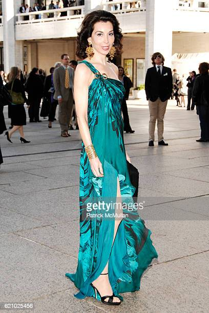 Fe Fendi attends AMERICAN BALLET THEATRE 68th Annual Spring Gala at Metropolitan Opera House on May 19 2008 in New York City