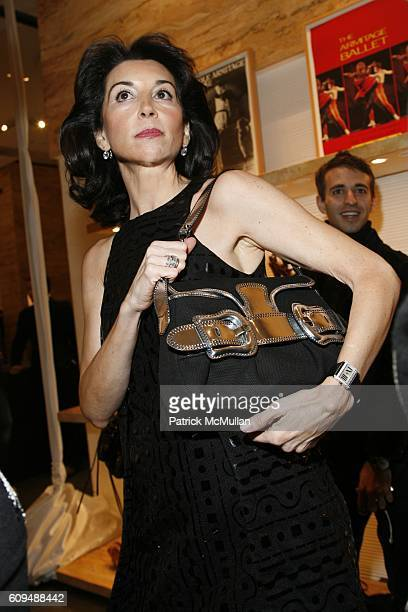 Fe Fendi attends FENDI Celebrates Karole Armitage and ARMITAGE GONE DANCE at FENDI on January 16 2006 in New York City