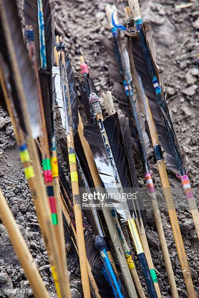Feathered arrows at archery tournament
