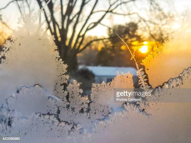 feathered ice crystals - cleveland ohio stock-fotos und bilder